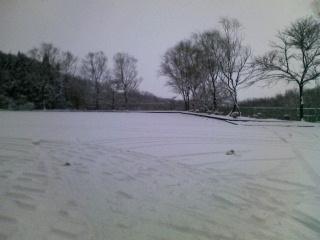 年の始めは雪